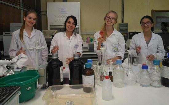 14 estudantes do IFSC integram grupos de investigação do P.PORTO