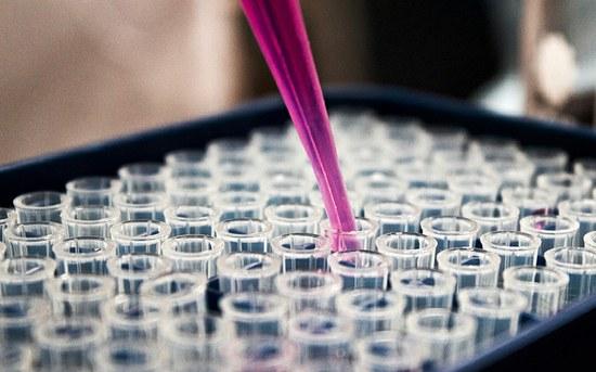 Rastreio e diagnóstico precoce em doentes com cancro